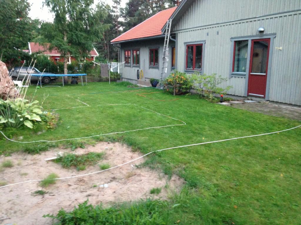 Trädgården på baksidan 2013