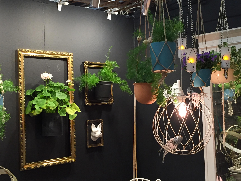 Bild från balkongutställningen på Nordiska Trädgårdar. Pelargoner och guldramar.